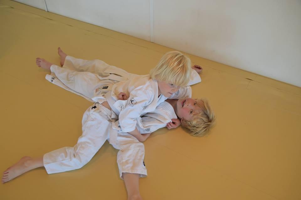 judolessen